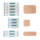 Wallace Cameron Plaster Case Assorted