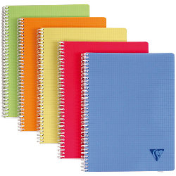 Clairefontaine Double spiral notebook Linicolor Assortment 5x5 grid A4