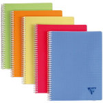 Clairefontaine Double spiral notebook Linicolor Assortment 5x5 grid A4 297 x 21 cm