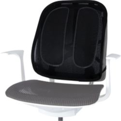 Chair Back Support True Wellness Active Lumbar Managers Leather