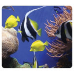 Fellowes Earth Series Mouse Pad Under the Sea