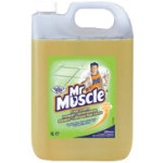 MR MUSCLE FLOOR CLEANER 5LTR