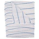 Pack 5 Blue Striped Dishcloths