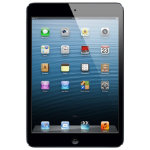 Apple iPad mini 16GB WiFi Black Slate