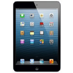 Apple iPad mini 16GB WiFi  Cellular Black