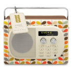 Pure Evoke Stem Mio DAB and FM radio