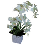 Artificial Plant Orchids White Green