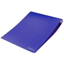 Rapesco 396 x 305mm Data Binders 132 Column Blue