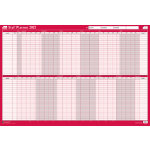 Sasco 2015 Mounted Staff Planner 610 x 915 mm