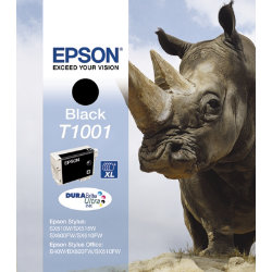 Epson T1001 Original Black Ink Cartridge C13T10014010