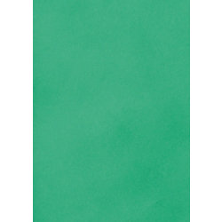 Briefpapier DIN A4 80 g/m² Grün 25 Blatt