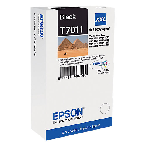 Epson T7011 Zwart Inkt Cartridges