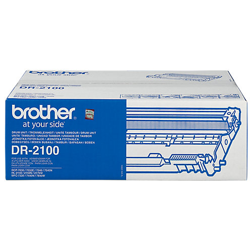 Brother Trommel (zonder toner) »DR-2100«
