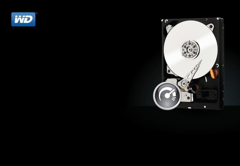WD Festplatte WD1003FZEX 1000 GB