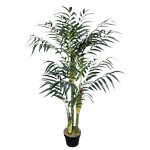 Bamboo plant Groen 1.000 mm