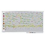 Legamaster Jaarplanner Professional Wit 200 x 100 cm