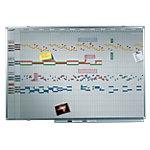 Planning annuel Legamaster Professional Blanc 2021 150 x 100 cm
