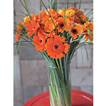 Bouquets de fleurs Bunchmakers Gerberas Orange