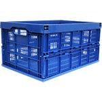 Boîte de transport pliable Viso Viso Polypropylène Bleu 45 L 36 x 53,5 x 28 cm