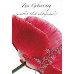 bsb obpacher Geburtstagskarte Mohnblume Spezial Mehrfarbig 10 Stück