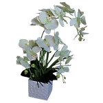 Künstliche Pflanze Orchidee Weiss, Grün 600 mm