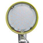 Alba Schreibtischlampe LED Luce Grün, Silber
