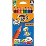 Crayons de couleur inéffritable en résine BIC Ecolutions™ Evolution Assortiment de couleurs 12 Unités