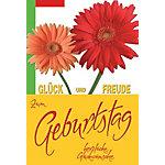 Carte d'anniversaire bsb obpacher Gerbera 11.5 x 17 cm Spécial Assortiment 10 Unités