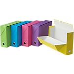 Boîtes de transfert FAST Fun Line 25,5 (H) x 34 (l) cm Rose, bleu, vert, jaune, violet   5 Unités