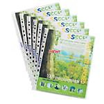 Pochettes oxo biodégradables SSeco Sseco A4 Transparent