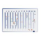 Planning annuel linéaire   Legamaster   Accent   60x90 cm