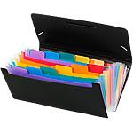 Trieur chéquier Viquel 110887 05 12 intercalaires Noir (intérieurs multicolores)