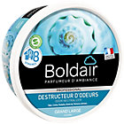 Destructeur d'odeurs Boldair Parfum neutre Neutre   300 g