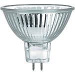 Ampoule GU5.3 35 W Blanc froid