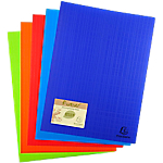 Protège documents soudé Exacompta Forever PP Polypro recyclé 20 A4 Assortiment