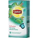 Capsules d'infusion Verveine, menthe fraîche Lipton 10 Unités