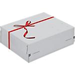 Boîte d'expédition Cadeau 24,1 (H) x 16,6 (l) x 9,4 (P) cm Blanc   2 Unités