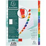 Onglets de séparation Exacompta 1112E A4 Assortiments 12 intercalaires Perforé Carte