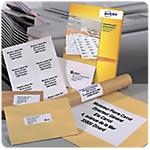 Étiquettes AVERY Zweckform DP001 100 Blanc 210 x 297 mm 10 Feuilles de 10 Étiquettes