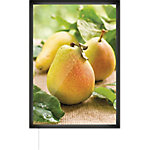 Marco expositor LED Magnetto Light Slim PosterFix 50 x 70 cm plata