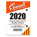 Ingraf taco calendario Eficient Catalán 2020 8,2 x 11,6 cm