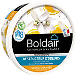 Destructeur d'odeurs Boldair Fleur d'orange Fleur d'orange   300 g