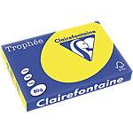 Papier couleur Clairefontaine A3 80 g