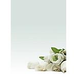 Carta a tema DECAdry Rosa bianca A4 90 g
