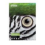 Carta cotone Epson C13S450274 opaca