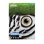 Carta cotone Epson C13S450267 opaca