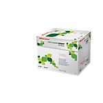 Carta riciclata Office Depot Multifunzione A4 80 g