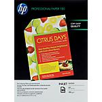 Carta Fotografica HP Flyer A4 lucido 180 g