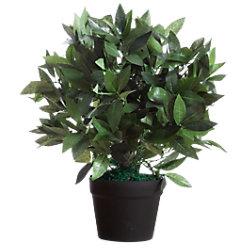 Paperflow Künstliche Pflanze Le Laurel 190 x 190 x 500 mm K700134