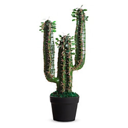 Paperflow Künstliche Pflanze Kaktus Grün 260 x 190 x 600 mm PACAC60